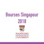 Nanyang Scholarship
