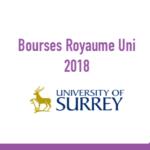 University of Surrey bourses maroc